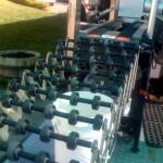 Reyes bottling boxes on conveyer belt