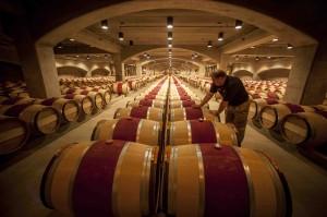 Robert Mondavi winery. (Photo credits: 2014 Robert Holmes)