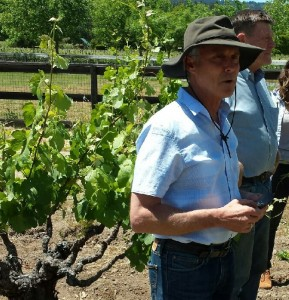 Bob Biale and vineyard manager Bill Pease at Old Kraft Vineyard