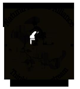main NPA Logo w text