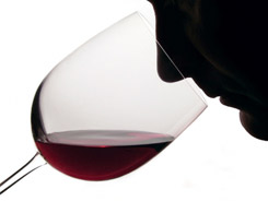 nose in wine glass used by vwc