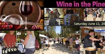 Wine in the Pines 2016:  Pines, Wines and Beers In The Woods