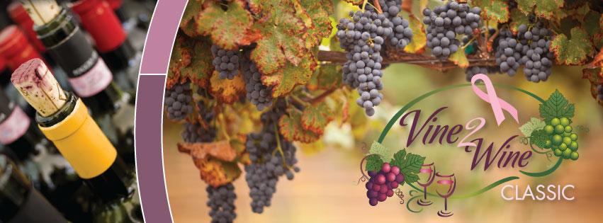 2013-vine-2-wine-classic-banner1