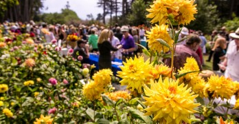 32nd Annual Winesong event on the Mendocino Coast
