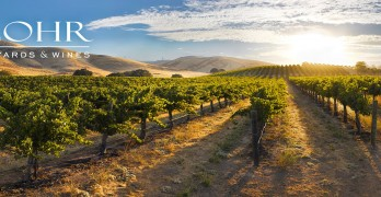 J Lohr Winemaker Steve Peck named 'WINEMAKER OF THE  YEAR' BY THE SAN LUIS OBISPO COUNTY WINE INDUSTRY