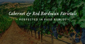 Paso Robles CAB Collective Presents 4th Annual CABs of Distinction Grand Tasting