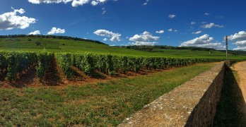 From LocalWineEvents.com – Heart of Burgundy Wine & Food Tour