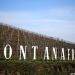 "Fontanafredda Named ""European Winery of the Year"" by Wine Enthusiast"