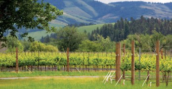 WHAT'S NEW IN WALLA WALLA WINE COUNTRY? QUITE A LOT, ACTUALLY