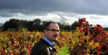 Perlis Picks – The New Wine Rules by Jon Bonné