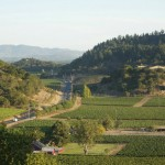 Stags Leap District Winegrowers' 20th Annual Vineyard to Vintner