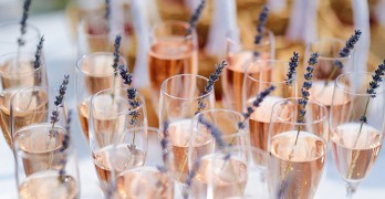 Winners of 2018 Experience Rosé Competition Announced
