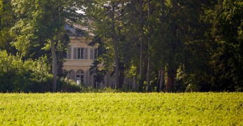Château de Pommard presents Rootstock 2018, Burgundy's music, wine and food festival