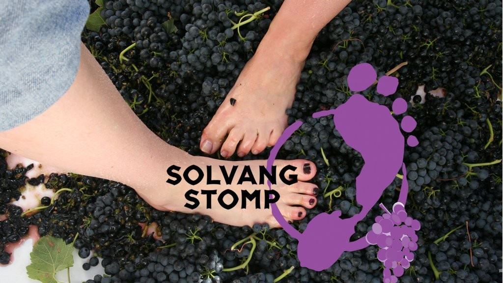 grape-stomp-webpage-w-logo__hero