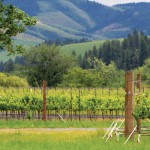 "Sunset Magazine names Walla Walla ""Best Wine Town"""