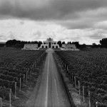 Two Wines from Catena's Adrianna Vineyard are First South American Wines Awarded 100 Points from Robert Parker's The Wine Advocate