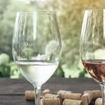 Wine Tasting US Open Championship Announces 2018 Team USA