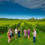 New Ways to Sip, Savor and Sightsee by the Sea in Nova Scotia