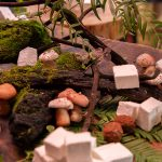 Big Sur Foragers Festival Dates Announced: January 16-19, 2020