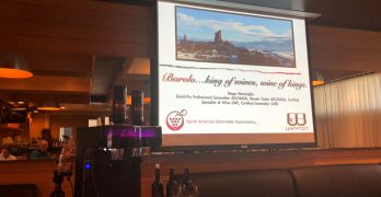 Learning About and Tasting 2015 Barolo, Plus the WhyNot Wine Saver