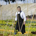 Spain's LeDomaine Resurrects Monk's Organic Vegetable Garden of 900 Years Ago