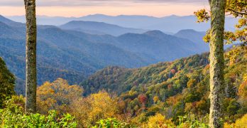 Culinary and Cultural Journey through the Tennessee River Valley
