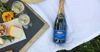 Domaine Carneros Has Reopened with New Safety Protocols in Place