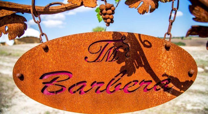 Tenuta Montemagno Brut: the Barbera grape becomes sparkling