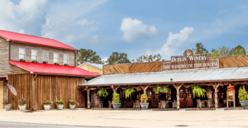 Duplin Winery Announces Major New Attraction