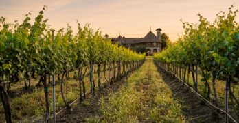 Walla Walla's Newest Businesses – And A Luxury Wine Resort – Spotlight the Valley's Bounty